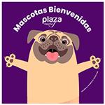 mascotas-bienvenidas-plaza-imperial-150